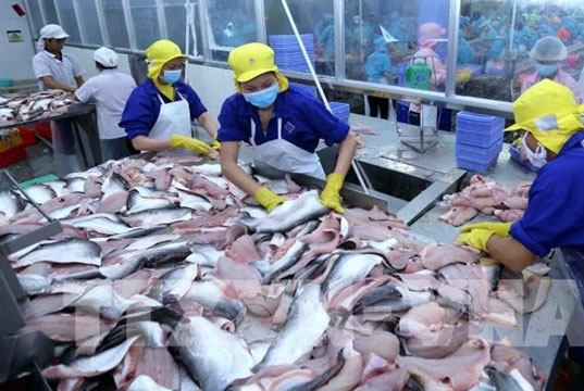 Seafood sectors urged to diversify products
